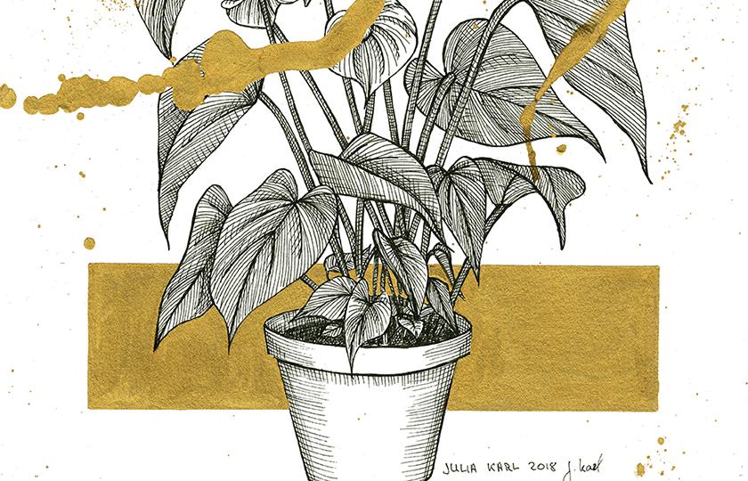 Plant Opulence 2